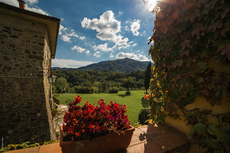 Agriturismo Ca' del Bosco  An inviting Terrace for everyone