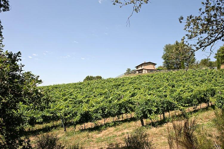 Holiday Home Arezzo Tuscany Incrociata