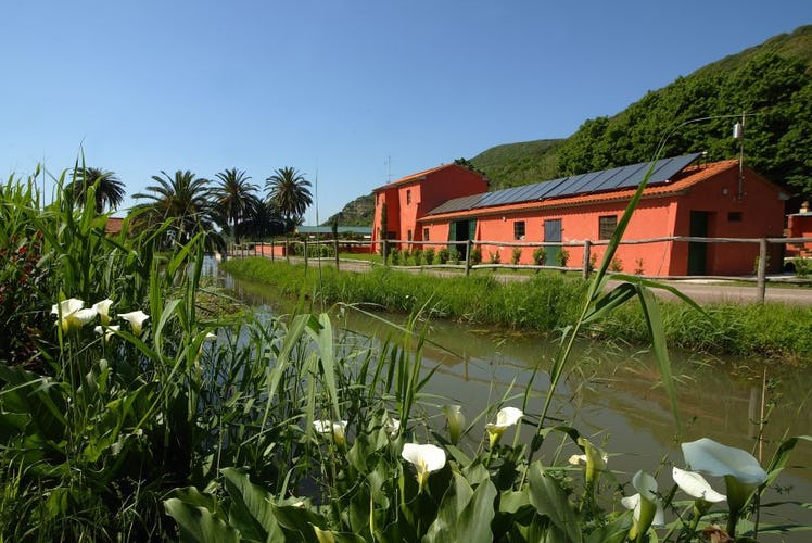 Ideal position in natural reserve yet close to Pisa, Lucca & the beach