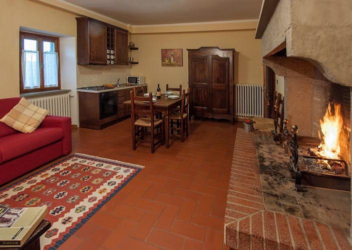 Agriturismo La Collina Delle Stelle - appartamento dotato di tipico caminetto toscano in pietra