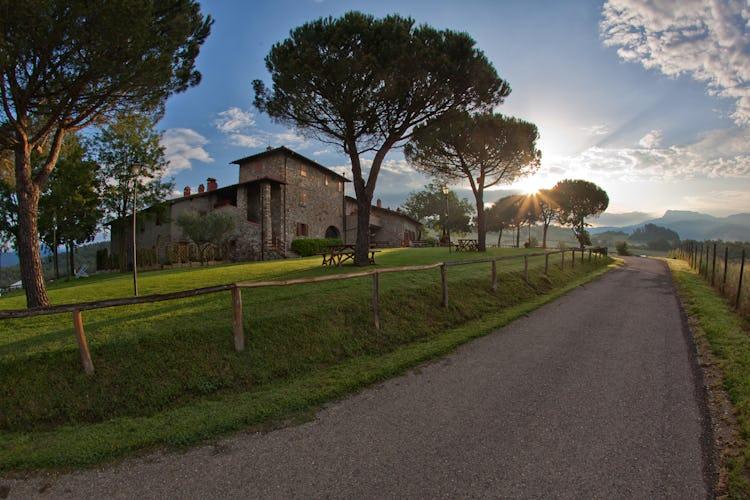 Agriturismo La Collina Delle Stelle - immerso nel meraviglioso paesaggio rurale toscano