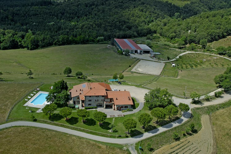 Agriturismo La Collina Delle Stelle - the ideal countryside vacation in Tuscany