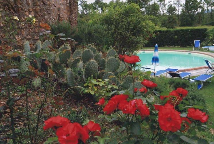 Vista della piscina con i fiori che ornano il giardino