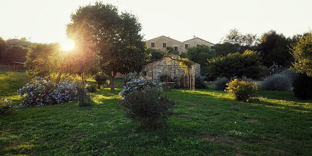 Agriturismo La Valentina - A sunset, a glass of wine and a fun vacation treat