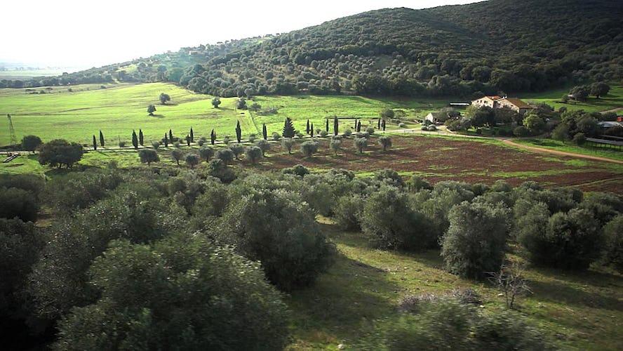 Agriturismo La Valentina nel Parco della Maremma