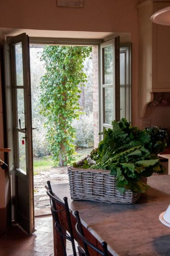Oltre ad accogliere ospiti,Montefreddo è un'autentica fattoria toscan