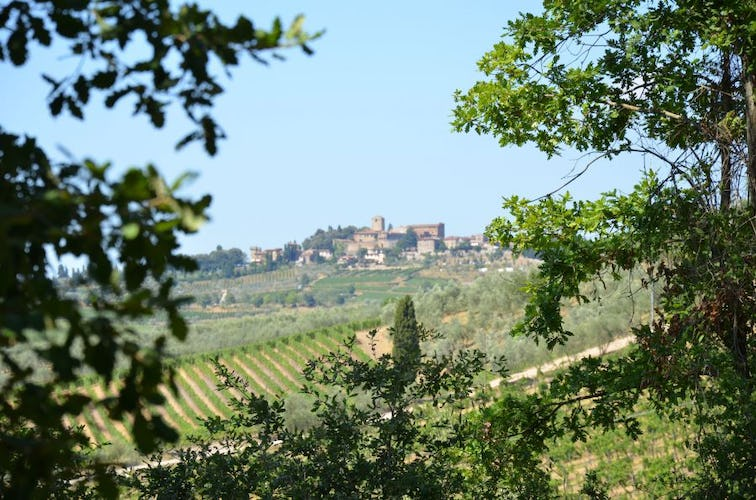 View from the Farmhouse San Clemente Chianti