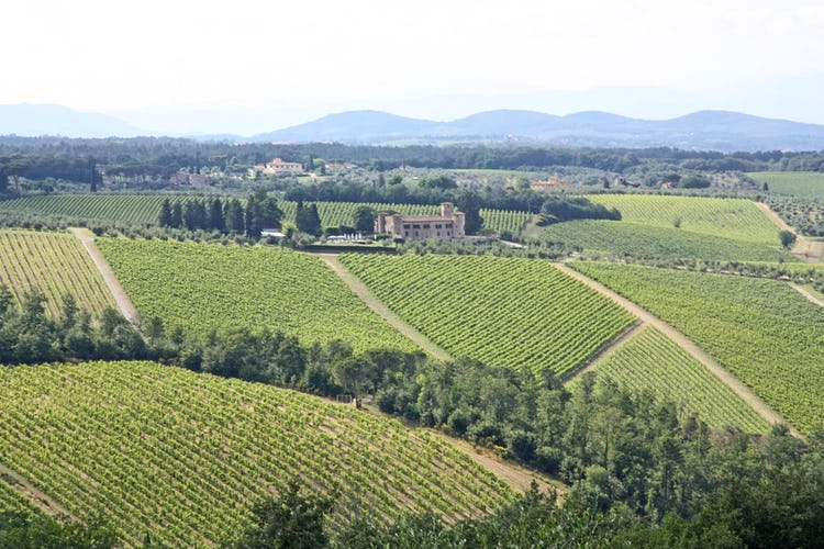 Agriturismo Vicolabate: tanquility assured in the countryside