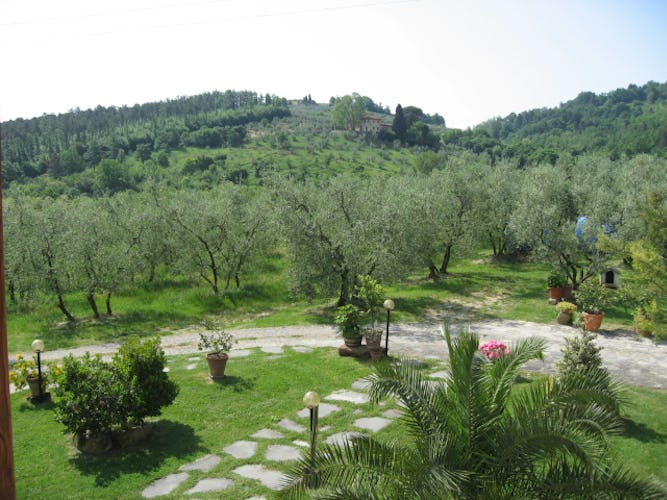 View from the Farmhouse Villani Near Florence