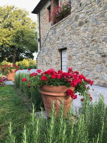 BelSentiero Estate & Country House: i fiori del giardino riempiono l'aria dei loro profumi