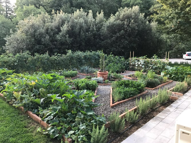 BelSentiero Estate & Country House: Herb gardens for a lovely walk