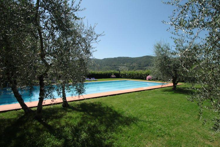 La piscina circondata dal verde della campagna del Chianti e dagli olivi sotto i quali godere di un pò d'ombra