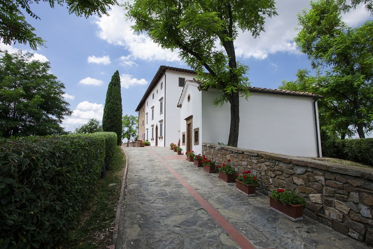 Il vialetto di accesso di Borgo La Casaccia, costeggiato da fiori e piante profumate