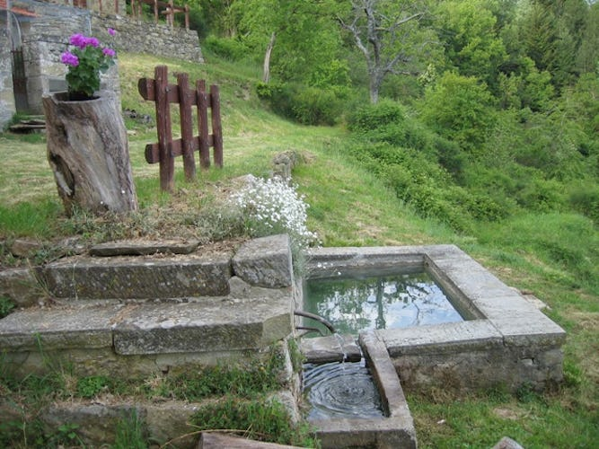 Farmhouse Borgo Tramonte Fountain
