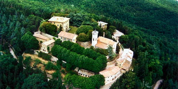 The beautiful Villa surrounded by the green