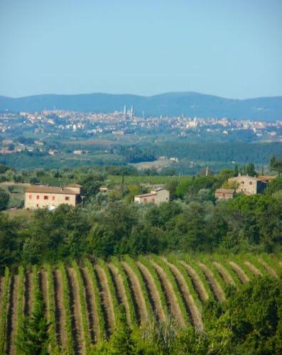 La vista di Siena all'orizzonte, panorama incantevole e mozzafiato