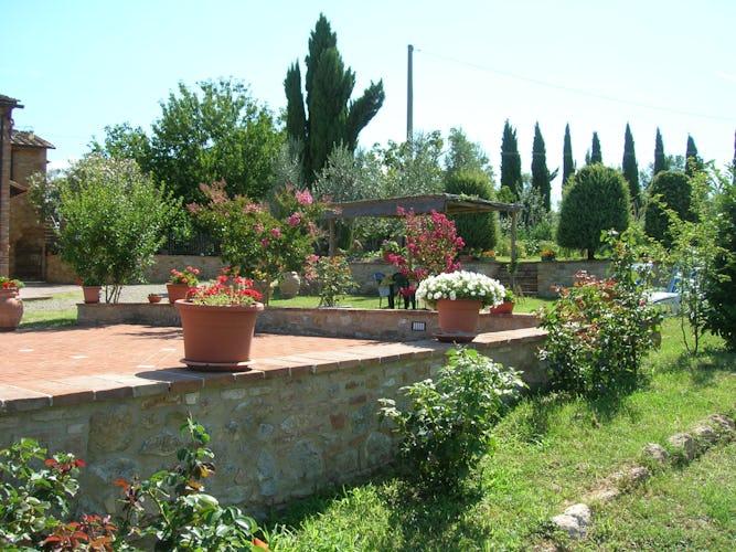 Agriturismo Casa dei Girasoli - il giardino curato con meticolosa attenzione, un'esplosione di vivacità e colori