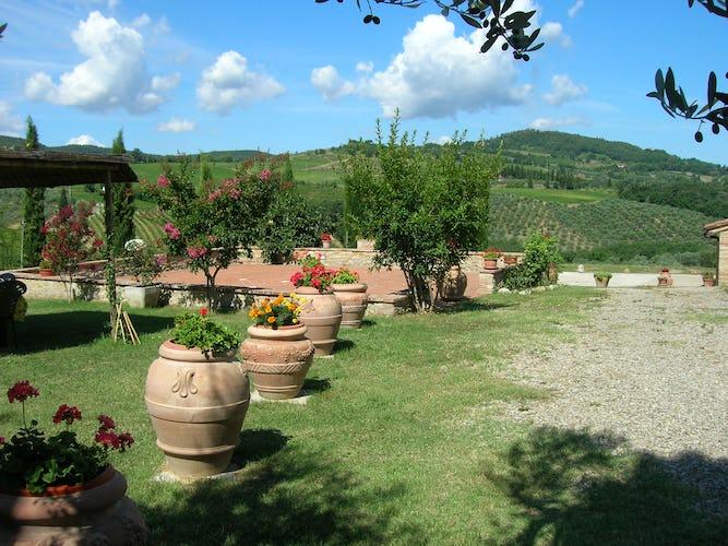 Agriturismo Casa dei Girasoli - Le verdi distese che circondano l'agriturismo, una piacevole alternanza di vigneti, oliveti e girasoli