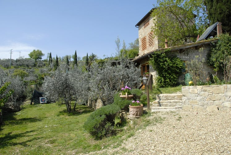 Agriturismo Casa Mezzuola - Olive Trees