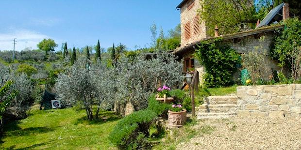 Casa Mezzuola, immersa in due ettari di oliveti nel Chianti
