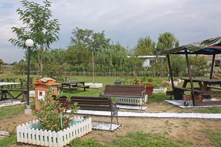 The lovely garden outside the b&b