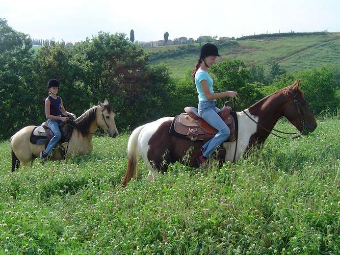 Gita a Cavallo Castellare di Tonda Montaione