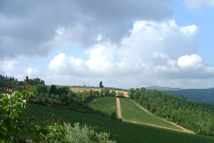 Tranquility and relax near Greve at Chianti Apartments