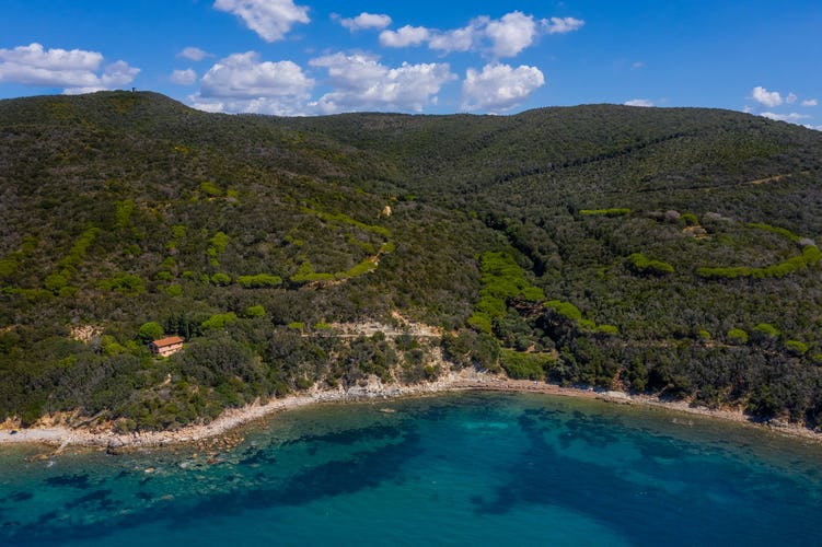 The beach with the clear water of the Tuscan coastline