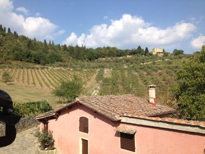 Fattoria dell'Orto degli Ulivi -Panoramic View