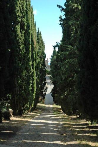 Arriving at Fattoria di Catignano in Chianti