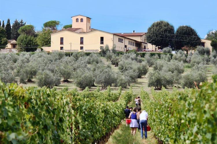 Fattoria Pagnana: vacation on a vineyard