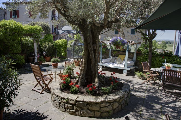 Il Sole Del Sodo - Olive tree terrace