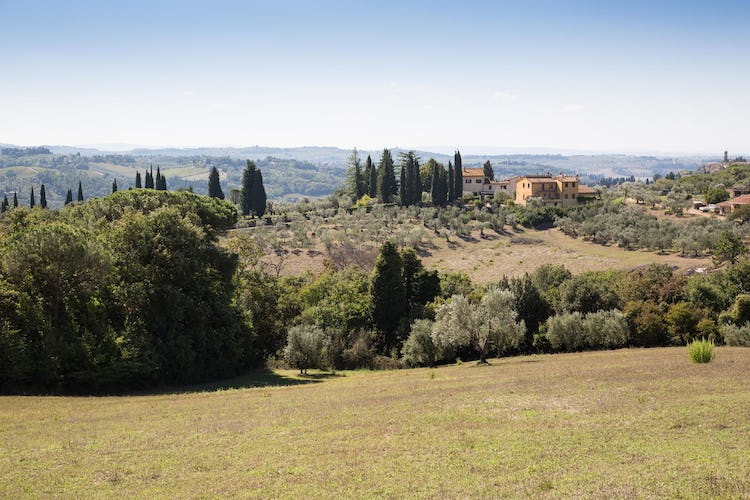 La Canigiana Chianti Holiday Home surrounded by olive groves