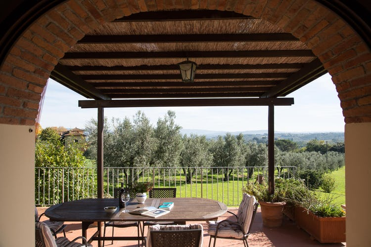 La Canigiana Chianti Vacation Apartments: surrounded by olive groves