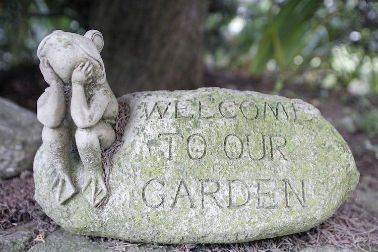 Dettaglio del giardino, ben tenuto e curato