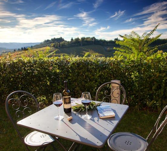 La Certaldina, casa vacanze con vista mozzafiato sulle sinuose colline della Toscana, ricoperte da filari di vigneti ed oliveti