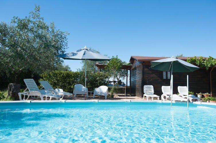 La piscina, incastonata nel verde dell'ampio giradino e degli olivi
