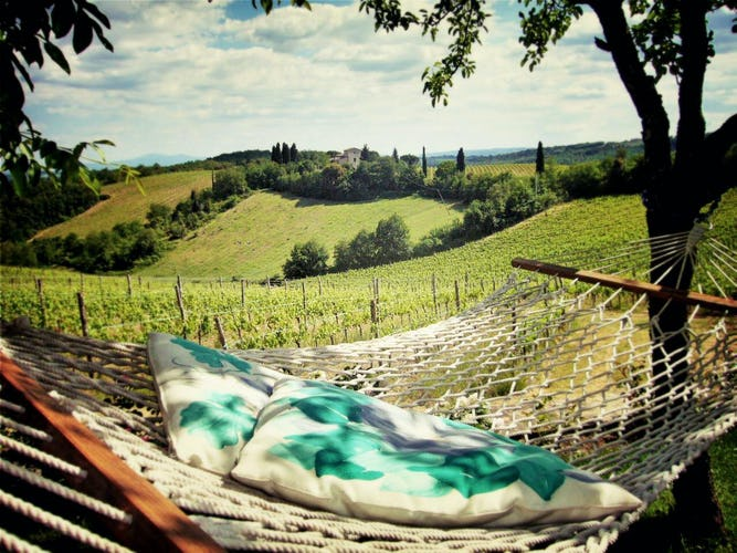 La Pieve Marsina: Holiday rentals with panoramic garden views