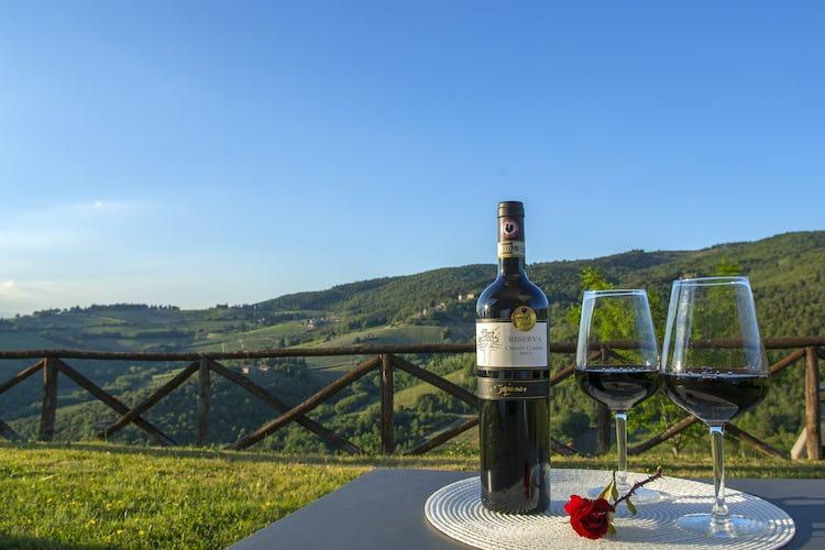 La Rocca di Cispiano: wine tasting in Chianti