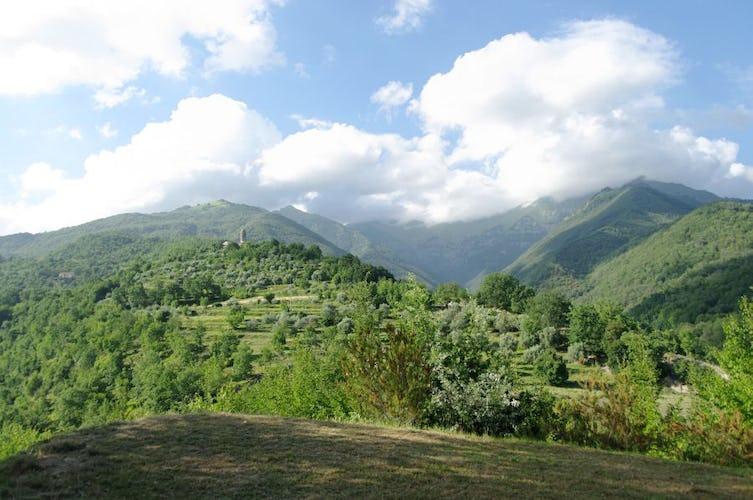 Dalla villa, vedute mozzafiato sulle Alpi Apuane
