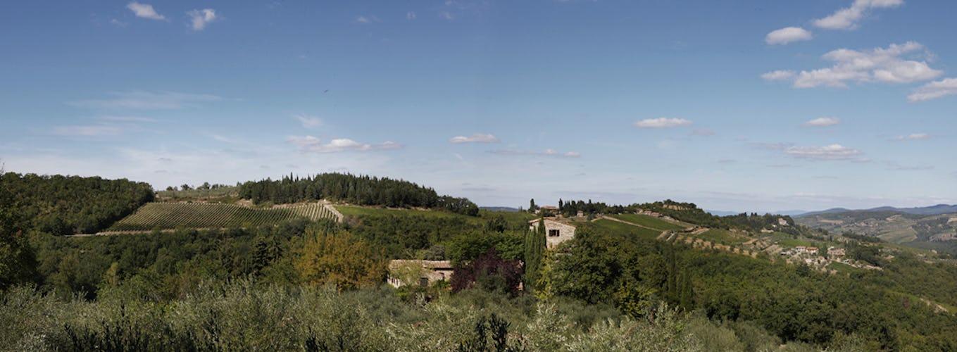 Vista sulle colline del Chianti dalla tenuta