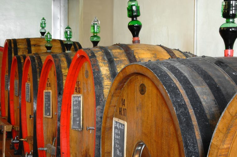 Arrange a wine tour and guided tasting with the owners