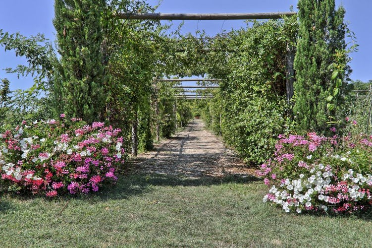 Fragrant gardens & colorful blooms adorn at Taverna di Bibbiano