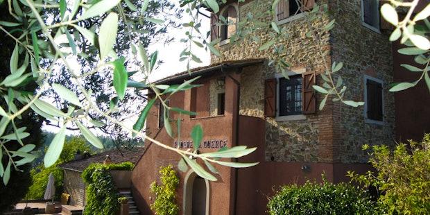 Tenuta San Vito Montelupo Fiorentino, vigneti ed oliveti biologici