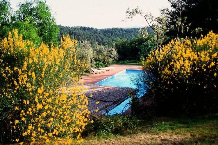 Sarete circondati dal profumo delle ginestre e dei fiori di campagna