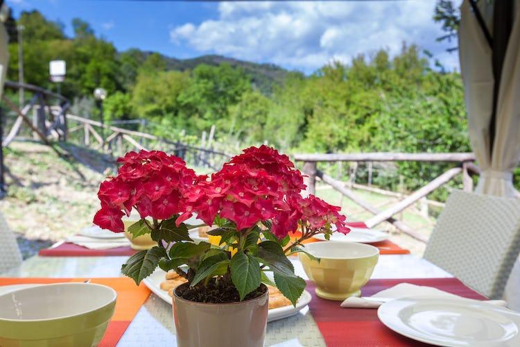 Ghiaia Holiday Villas & Homes: destinazione da sogno per trascorrere un soggiorno nelle vicinanze di Lucca