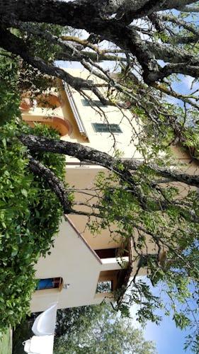 Villa Tiziana: terrazza coperta per mangiare all'aperto