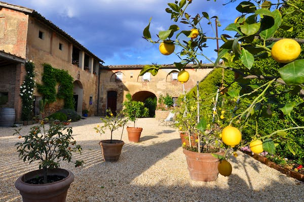 Agriturismo Marciano - More details