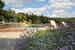 Fattoria di Maiano: la piscina è circondata dai profumi tipici della campagna toscana